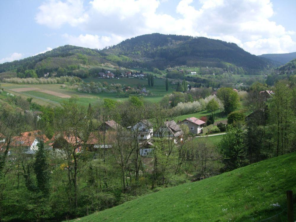 Foto: Blick auf den Ortsrand von Lauf mit Bergen im Hintergrund