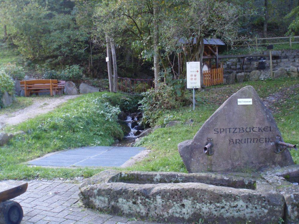 Foto: Spitzbuckel- Brunnen mit Bachlauf