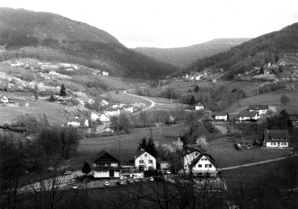 Foto: Historisches Bild von Lauf mit Blick auf die Berge (schwarz-weiß)