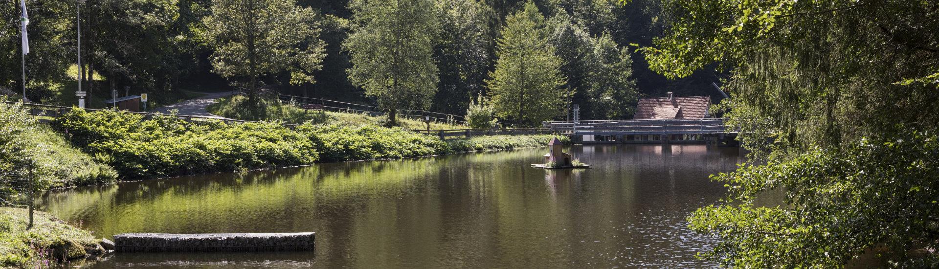Foto: Ausflugsziele in Lauf: Stausee