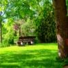 Foto: Bank unter Bäumen im Grünen