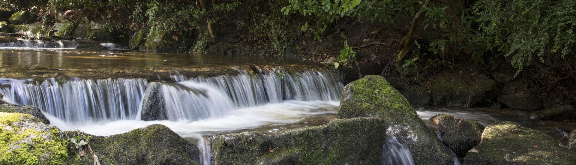Foto: Idylle am Laufbach - kleiner Wasserfall